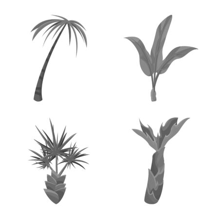 Vector illustration of jungle and botanical icon. Collection of jungle and flora stock vector illustration. Illustration