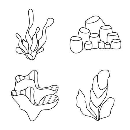Isolated object of sea and ocean icon. Collection of sea and flora stock vector illustration.