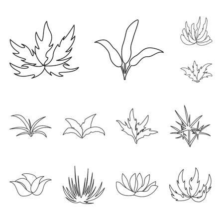 Vector illustration of hedge and shrub symbol. Set of hedge and floral vector icon for stock. Stockfoto - 128582442