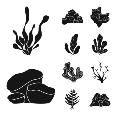Vector design of decoration and wildlife sign. Collection of decoration and aquarium stock symbol for web.