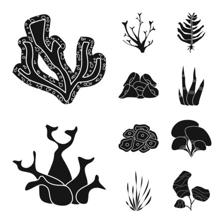 Isolated object of decoration and wildlife . Set of decoration and aquarium stock vector illustration.