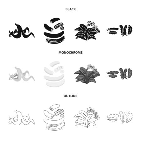 Vector illustration of natural and vegetarian sign. Collection of natural and eating stock vector illustration.