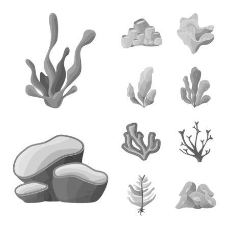 Vector design of botanical and flora symbol. Set of botanical and nature stock symbol for web.