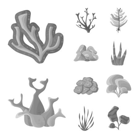Vector illustration of botanical and flora icon. Collection of botanical and nature vector icon for stock.