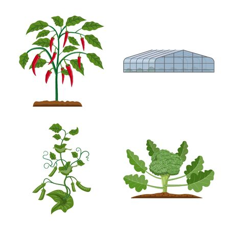 Vector illustration of greenhouse and plant sign. Collection of greenhouse and garden stock vector illustration. Illustration