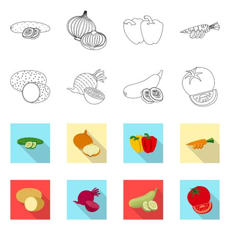 Isolated object of vegetable and fruit . Collection of vegetable and vegetarian vector icon for stock. Stock Illustratie
