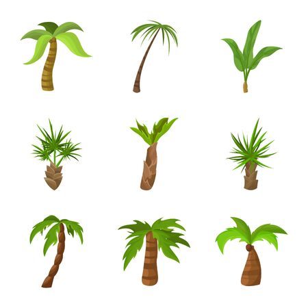 Isolated object of tree and beach icon. Set of tree and summer vector icon for stock.