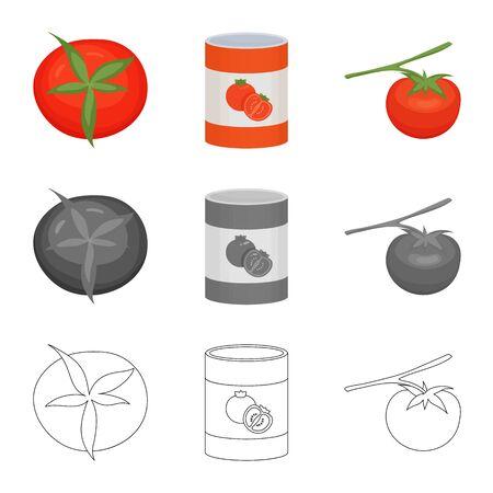 Vector design of vegetable and delicious symbol. Collection of vegetable and natural vector icon for stock. Ilustração