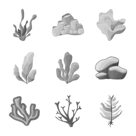 Vector illustration of botanical and flora sign. Collection of botanical and nature stock vector illustration.