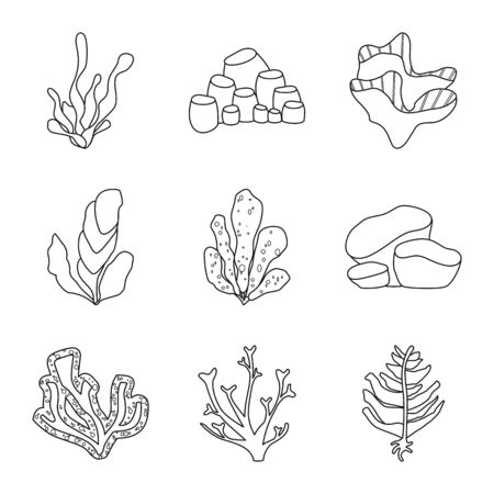 Vector illustration of sea and ocean. Collection of sea and flora stock vector illustration. Çizim