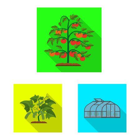 Vector design of greenhouse and plant logo. Set of greenhouse and garden stock vector illustration. Çizim
