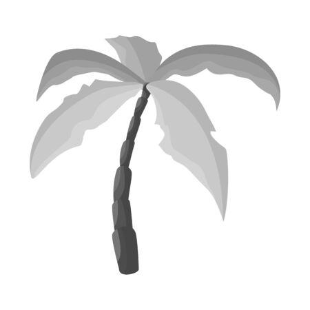 Isolated object of palm and coconut sign. Set of palm and hawaii stock symbol for web. Stock Illustratie