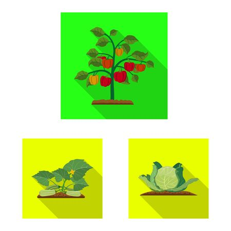 Vector illustration of greenhouse and plant. Collection of greenhouse and garden vector icon for stock.
