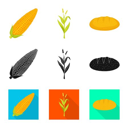 Vector illustration of cornfield and vegetable icon. Set of cornfield and vegetarian vector icon for stock. 일러스트