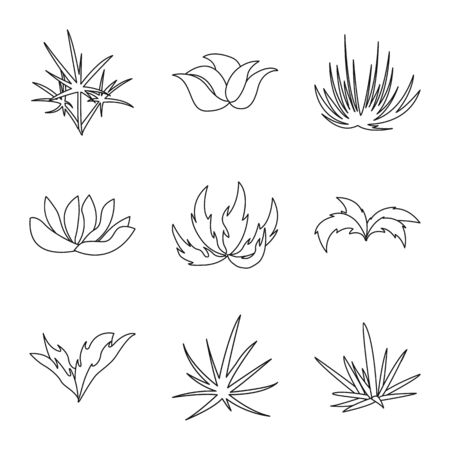 Isolated object of hedge and shrub  . Set of hedge and floral vector icon for stock.