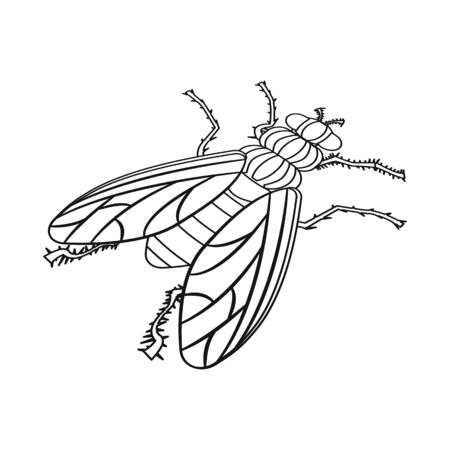 Vector design of housefly and pest symbol. Collection of housefly and bug vector icon for stock. Illustration
