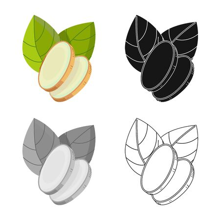Vector illustration of ginger and root icon. Set of ginger and aroma vector icon for stock.