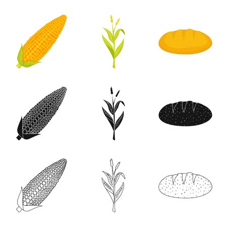 Vector illustration of cornfield and vegetable  . Set of cornfield and vegetarian vector icon for stock.
