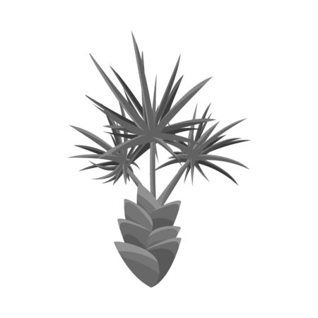 Vector illustration of palm and evergreen . Set of palm and banana vector icon for stock.