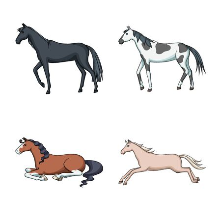 Vector illustration of animal and stallion. Collection of animal and farm stock symbol for web. Çizim