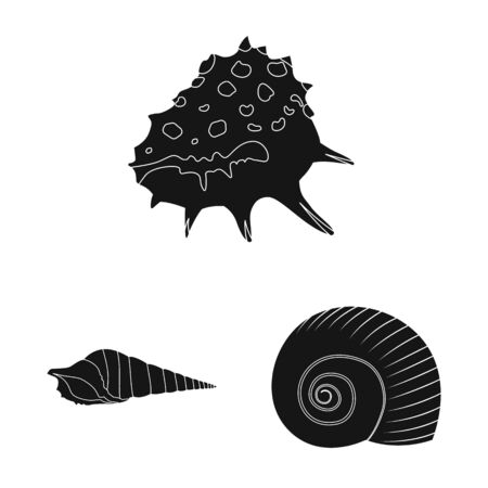Isolated object of nature and ocean icon. Set of nature and mollusk vector icon for stock. Banco de Imagens - 129433014