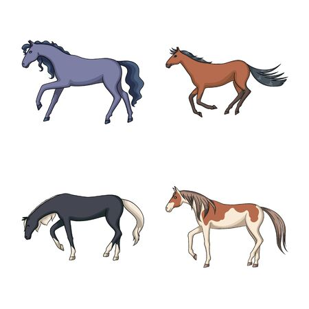 Vector illustration of animal and stallion icon. Set of animal and farm vector icon for stock.