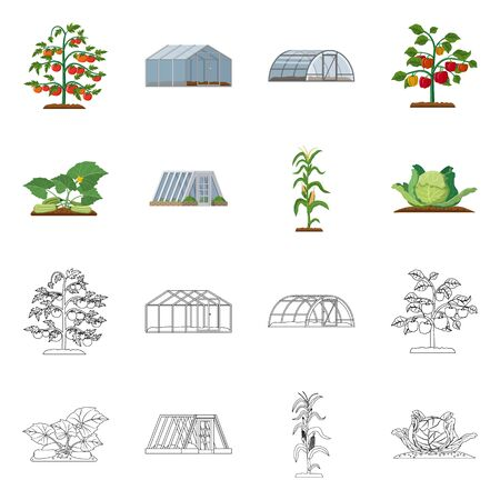 Vector design of greenhouse and plant  . Collection of greenhouse and garden vector icon for stock.