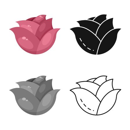 Isolated object of cabbage and purple  . Set of cabbage and ingredient vector icon for stock.