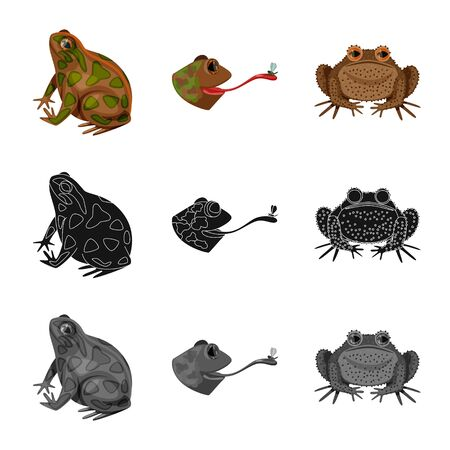 Vector illustration of wildlife and bog sign. Set of wildlife and reptile stock symbol for web.
