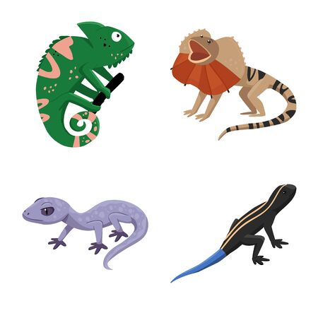 Vector illustration of animal and reptile symbol. Collection of animal and nature stock symbol for web.