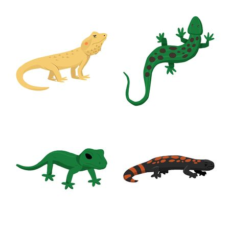 Vector illustration of animal and reptile icon. Collection of animal and nature stock symbol for web.