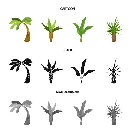 Isolated object of nature and flora. Collection of nature and ecology vector icon for stock.
