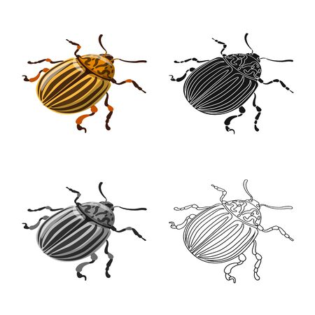 Isolated object of beetle and colorado symbol. Collection of beetle and striped stock symbol for web.