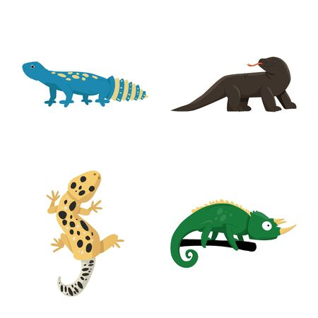 Isolated object of animal and reptile . Set of animal and nature vector icon for stock.