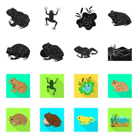 Isolated object of wildlife and bog sign. Collection of wildlife and reptile vector icon for stock.