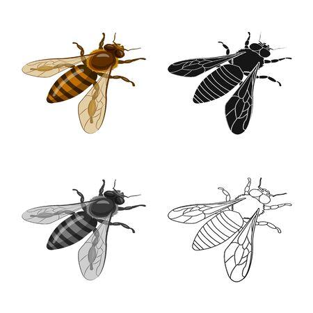 Vector illustration of bumblebee and wild icon. Collection of bumblebee and biology vector icon for stock. Foto de archivo - 130015461