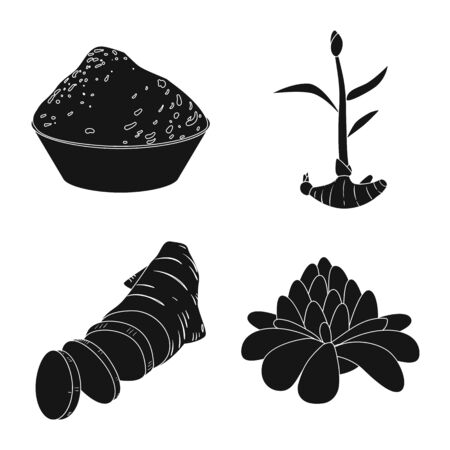 Vector illustration of nutrition and asian symbol. Collection of nutrition and food vector icon for stock.