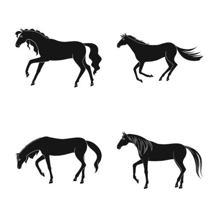 Isolated object of fauna and mare icon. Collection of fauna and stallion stock symbol for web. Çizim