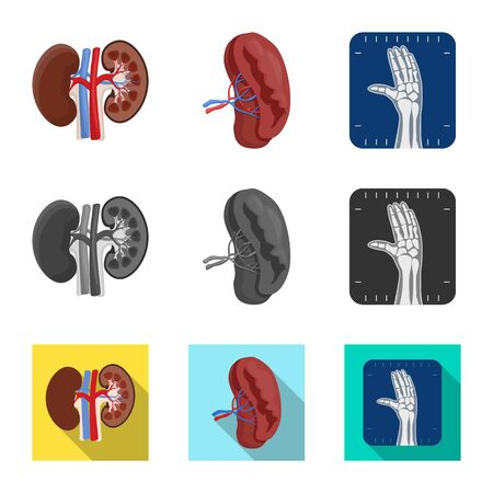 Isolated object of body and human symbol. Set of body and medical stock vector illustration. Foto de archivo - 129925068