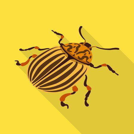 Isolated object of beetle and colorado icon. Set of beetle and striped stock vector illustration. Illustration
