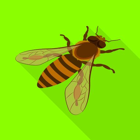 Vector design of bumblebee and wild symbol. Collection of bumblebee and biology vector icon for stock. Foto de archivo - 129901538