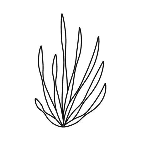 Vector design of seaweed and algae symbol. Set of seaweed and undersea stock vector illustration.