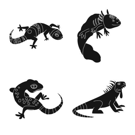 Vector illustration of zoo and environment symbol. Collection of zoo and reptile stock symbol for web.