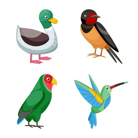 Vector illustration of animal and wild symbol. Collection of animal and nature stock vector illustration. Иллюстрация