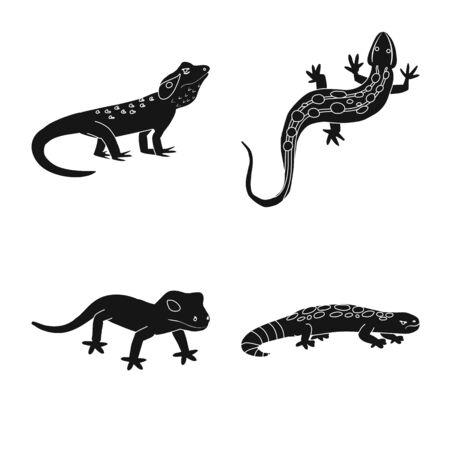 Vector illustration of zoo and environment . Set of zoo and reptile stock vector illustration.