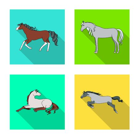Vector illustration of breed and equestrian  . Collection of breed and mare vector icon for stock.