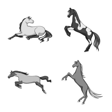 Vector illustration of farm and riding  . Set of farm and equestrian stock symbol for web.