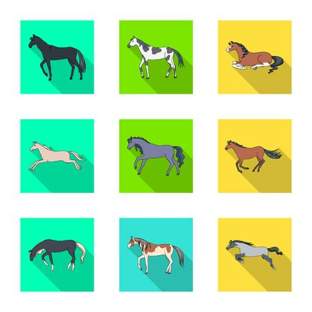 Vector illustration of breed and equestrian icon. Collection of breed and mare vector icon for stock.