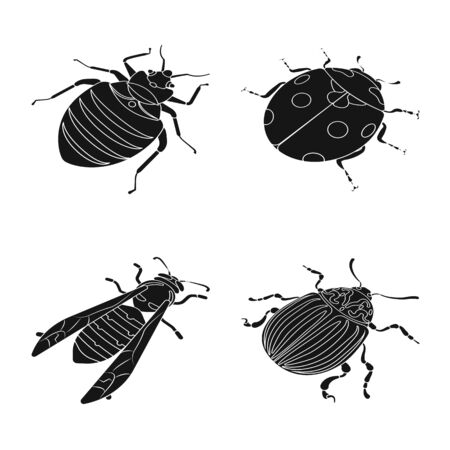 Isolated object of wings and wing logo. Set of wings and fly vector icon for stock.