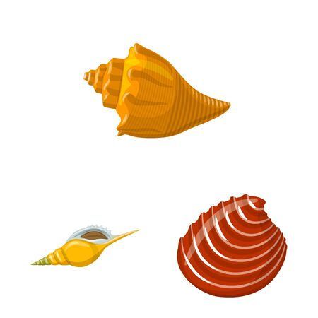 Vector design of seashell and mollusk icon. Set of seashell and seafood stock symbol for web.